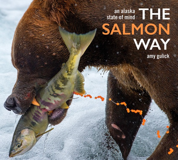 The Salmon Way Book Cover
