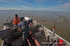 Commercial Fishing — Set Net Bristol Bay Alaska U.S.A.