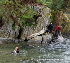 Castnetting Sweetheart Creek Alaska U.S.A.